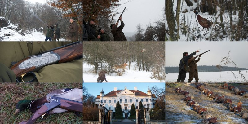 driven_pheasant_duck_hunting_in_hungary_10
